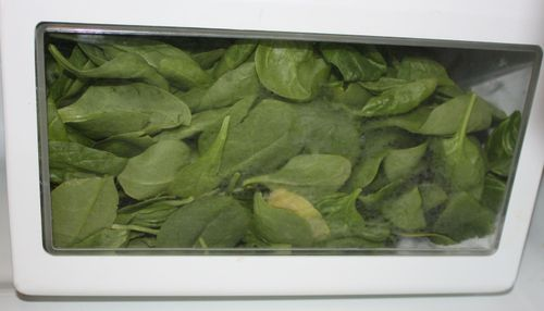 Spinach_in_crisper_1