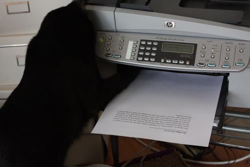 Pix 5_paw in printer